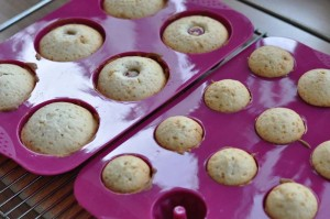 grabmuffins14