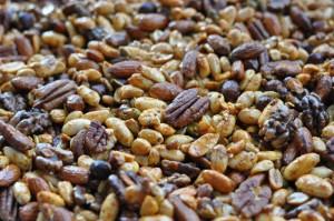 pitpowdernuts20